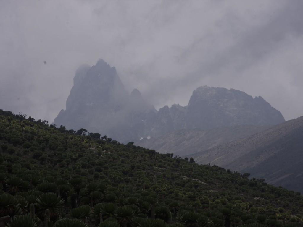 Mount Kenya (2011)-052