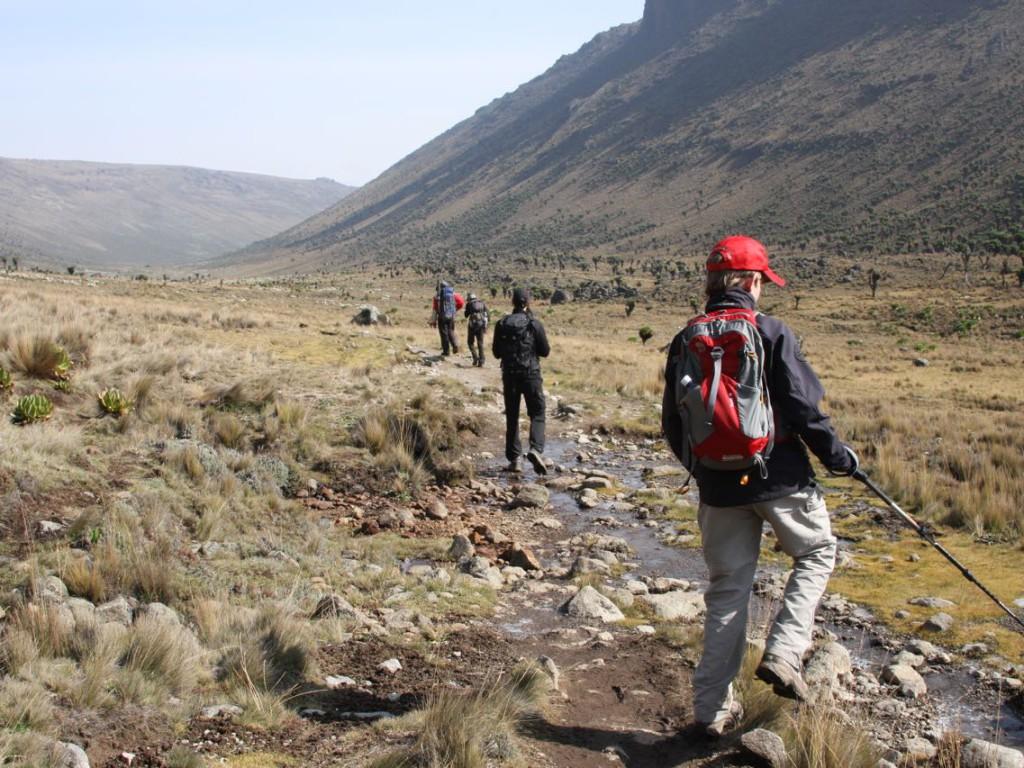 Mount Kenya (2011)-082