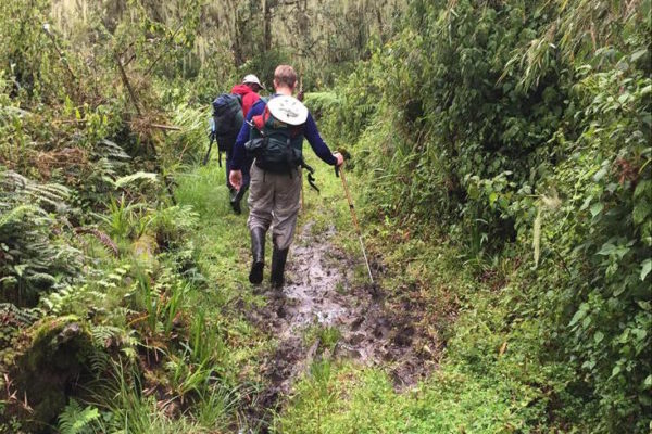 The muddy Ruwenzori